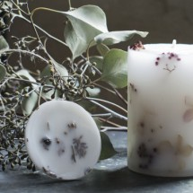 iris-workshop2151